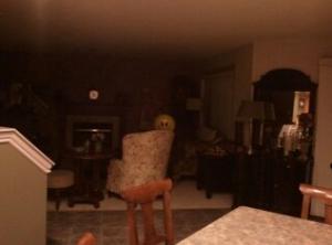Creepy balloon face 1